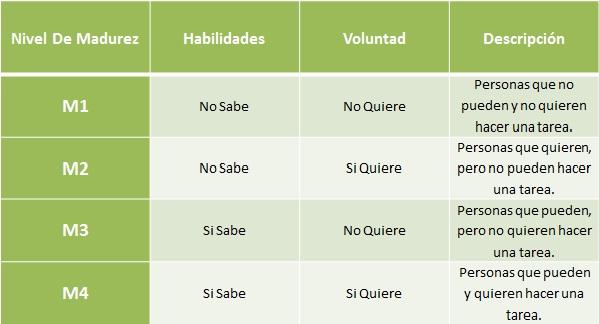 Nivel De Madurez Liderazgo Multinivel Estrategico